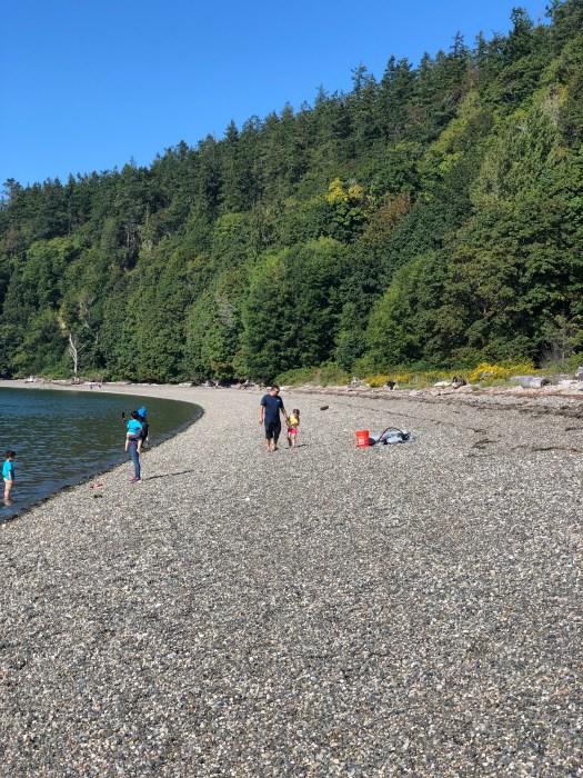 cama beach shoreline 6