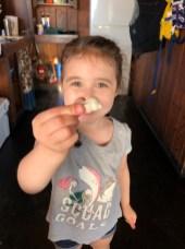kid shell collection camano island 1