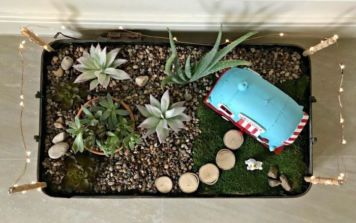 This LED Lighted DIY Indoor Succulent Garden Tray Is One Of The Easiest DIY  Succulent Garden