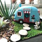 Fun DIY Indoor Succulent Garden with Mini Lights
