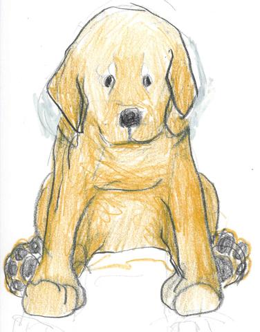 Dog sketch by annie