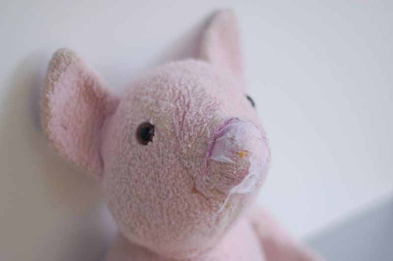 Old pig toy 2