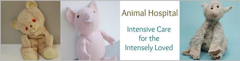 Animal Hospital Collage