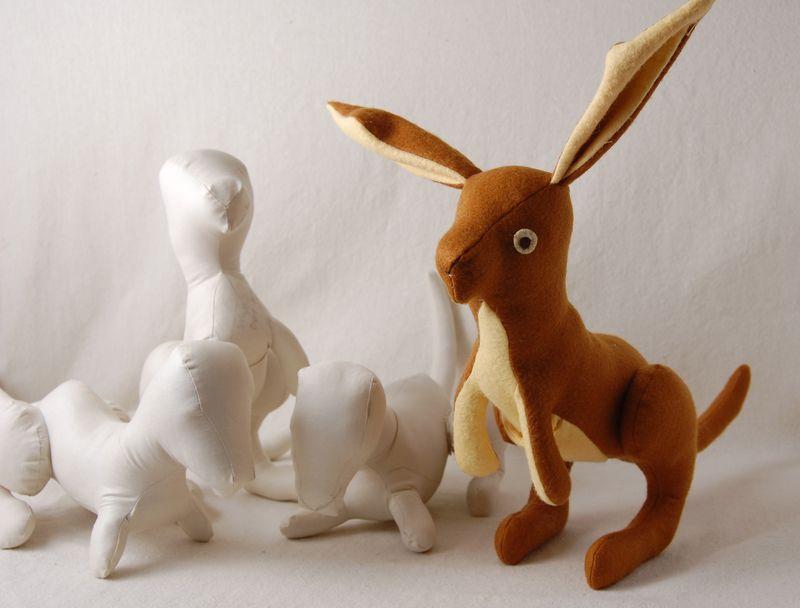 Kangaroo prototypes