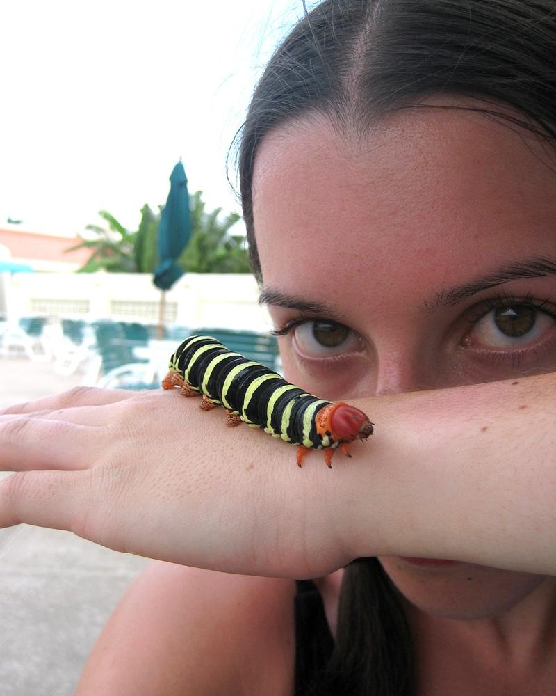 Weird_Bug_Lady_by_WeirdBugLady