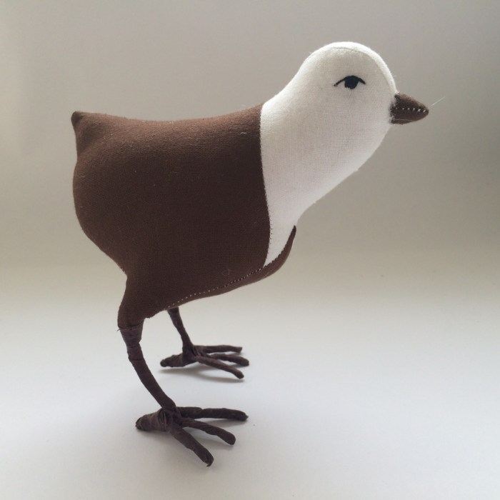 bird without feathers