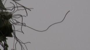 Screen Shot 2013-10-20 at 5.10.09 PM