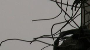 Screen Shot 2013-10-20 at 5.12.30 PM