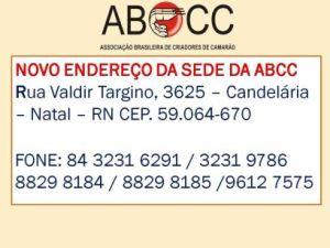 novo_endereo_da_ABCC-409307