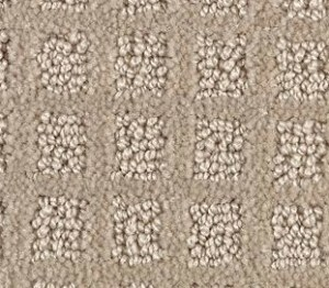 Cut and Loop Pattern Style Carpet