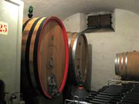 Culture Course - Wine Cellar Training - ABC de' Conti