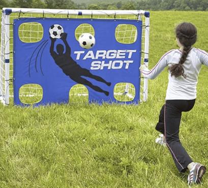 Target Shot Soccer Goal
