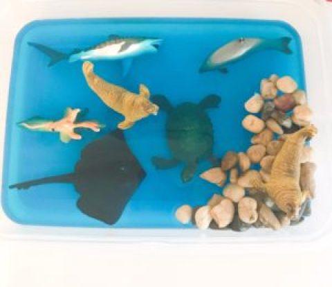 ocean jello sensory bin