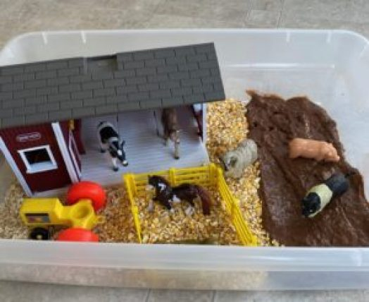 farm themed sensory bin