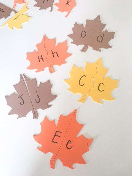 letter matching leaves