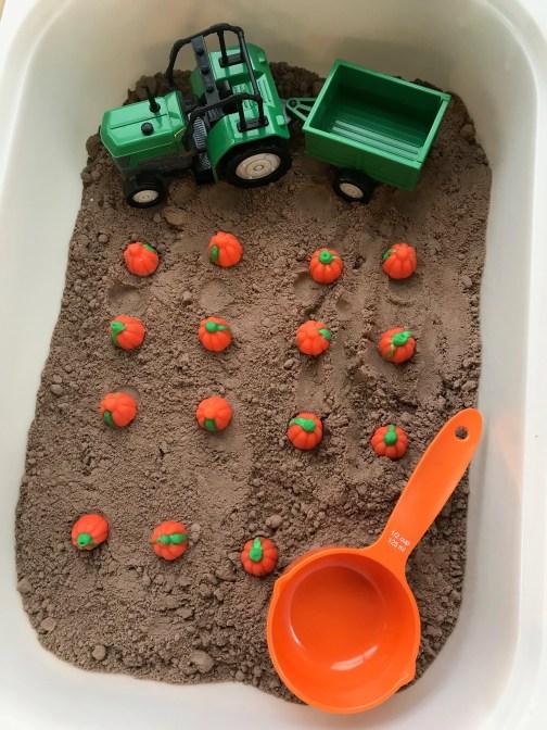 muddy pumpkin patch