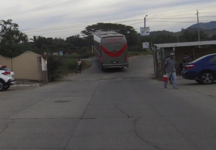 autobuses-flamingos-ixtapa-_002.jpg