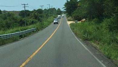 Photo of Automovilistas piden limpieza en carreteras federales