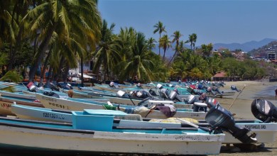 Photo of 3 mil pescadores de 4 municipios afectados por tormenta tropical Lorena