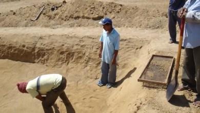 Photo of Bordos una necesidad primordial para los productores en la sierra