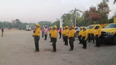 Photo of Elementos de protección civil municipal, estatal y CONAFOR participan en el combate de incendio en la sierra de Atoyac