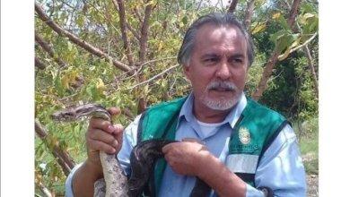 Photo of Muere asesor de medio ambiente de Astudillo, Leonel Lozano de Covid 19