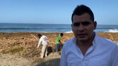 Photo of Pide alcalde de Tecpan la cooperación de todos para limpiar las playas de Bahías de Papanoa