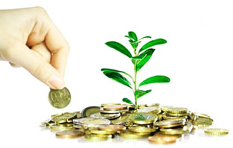 Hvordan tjene penge i en krise: måder at investere akkumulering med sind