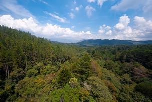 Foto tomada de Medellín Travel
