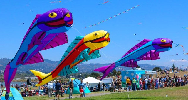 Berkeley Marina for 4th of July kites, food trucks, and crowds of people