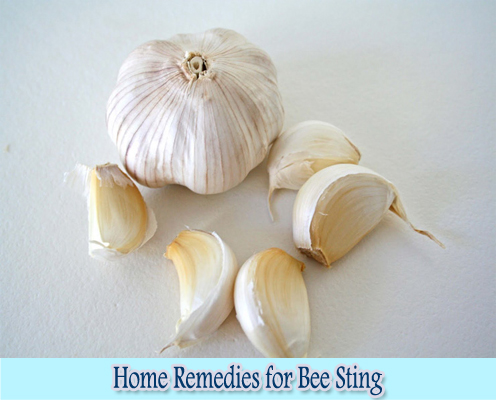 Garlic Cloves : Home Remedies for Bee Sting