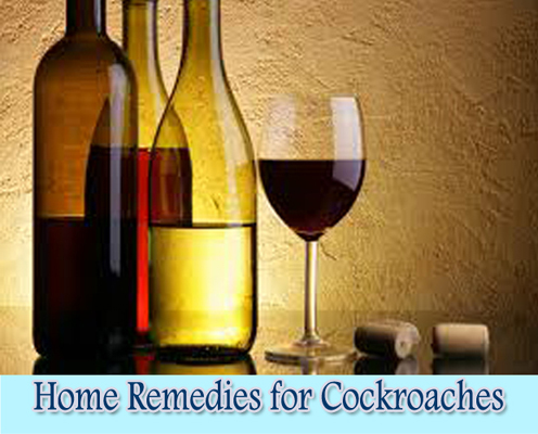 Wine : Home Remedies for Cockroaches