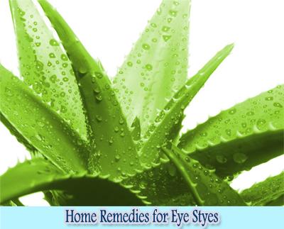 Aloe Vera : Home Remedies for Eye Styes