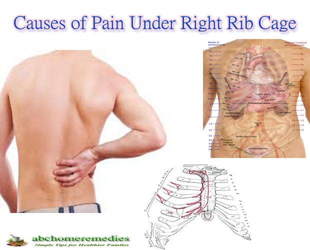 The same Bottom rib pain reply, attribute