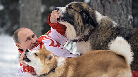 Vladimir Putin, Puppies Frolic in Snow - ABC News