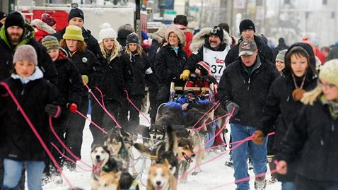ap scott janssen iditarod ll 120308 wblog Musher Saves Dog with Mouth to Snout