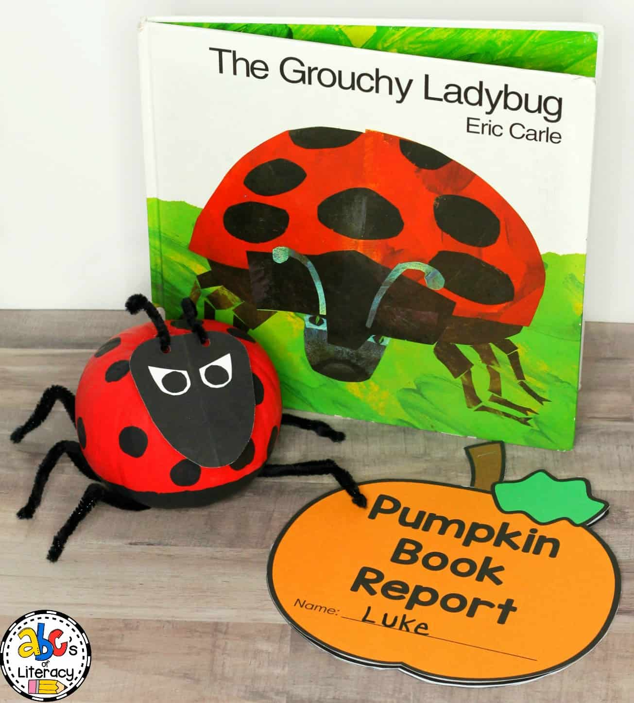 How To Make The Grouchy Ladybug Inspired Pumpkin Book Report