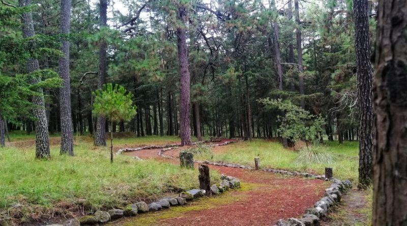 Gobierno de Cuéllar escribe una nueva historia para La Malinche