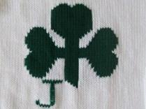 Labs and new irish sweaters 009 (570x428)