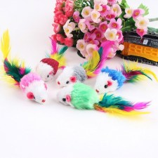 Cat's Feather Toys