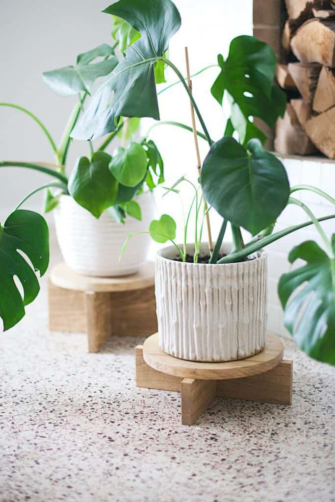 DIY Modern Wood Plant Stands - A Beautiful Mess on House Plant Stand Ideas  id=32128