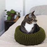 Make Your Own Knit Cat Bed A Beautiful Mess