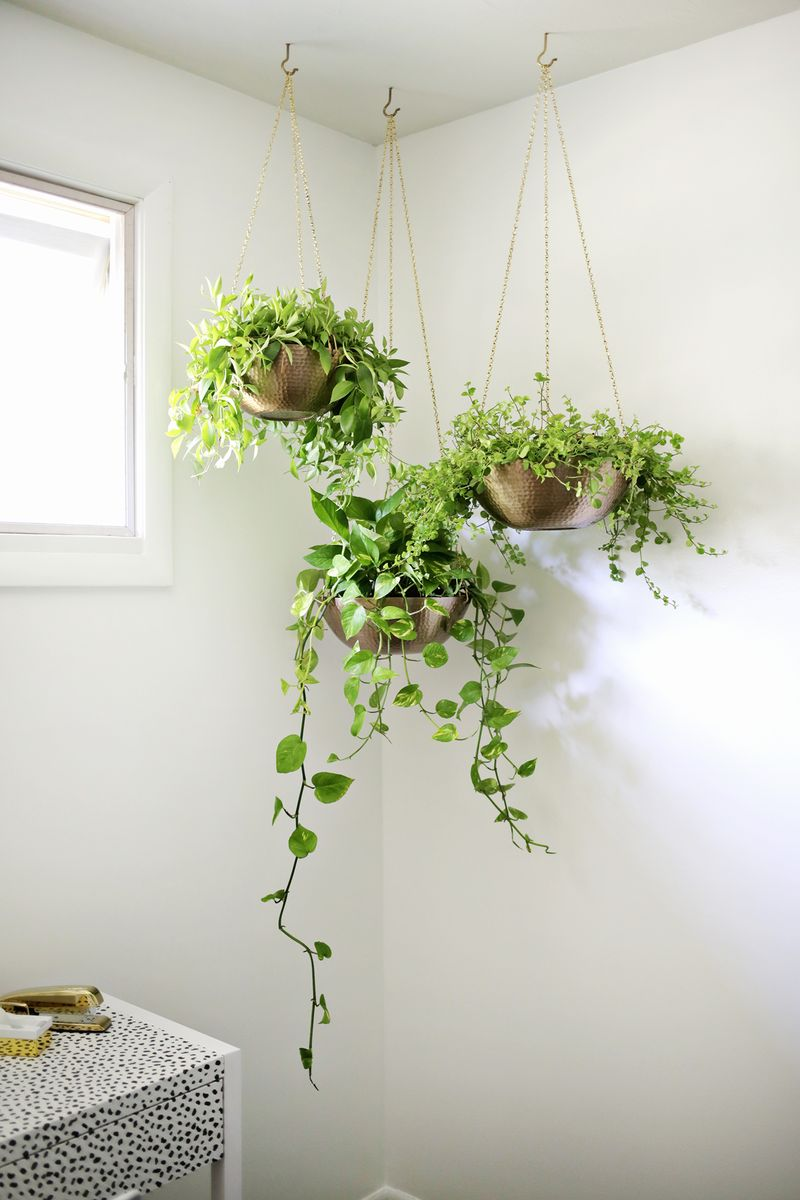Easy Hanging Planter DIY - A Beautiful Mess on Plant Hanging Ideas  id=16264