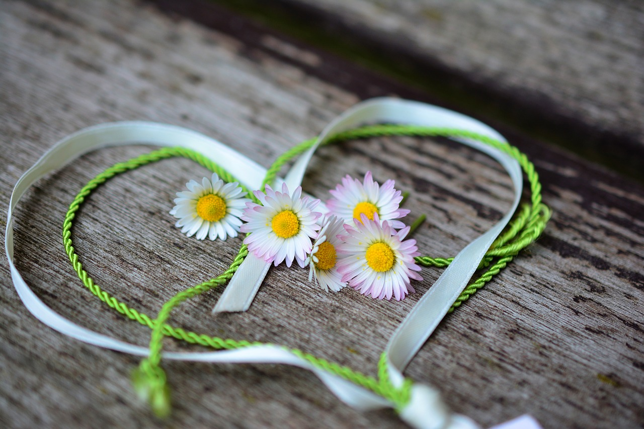 Friendship: photo from: https://pixabay.com/photos/daisy-heart-romance-valentine-s-day-3392654/