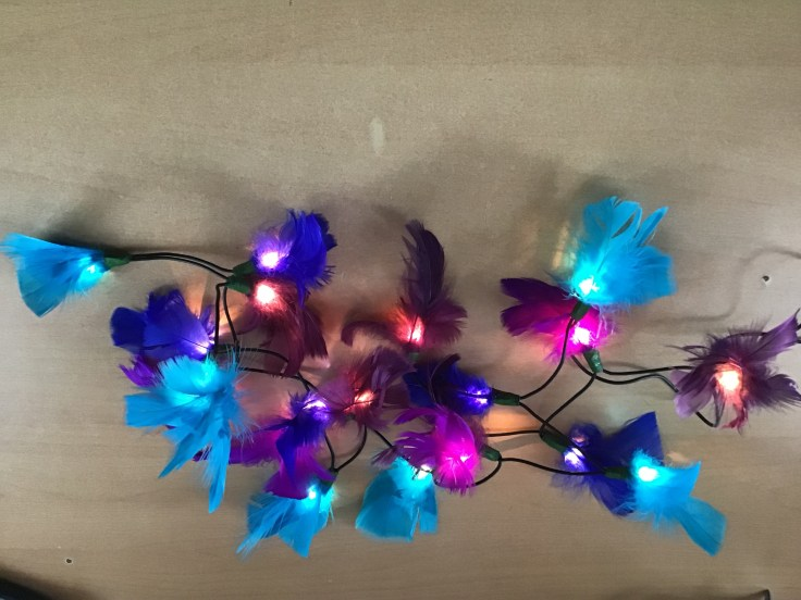 Decorated fairy lights- boys
