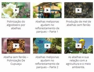 Frame Vídeos