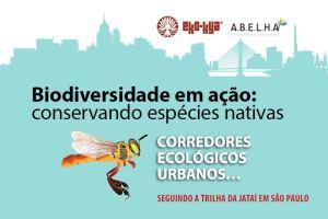 biodiversidade em centros urbanos