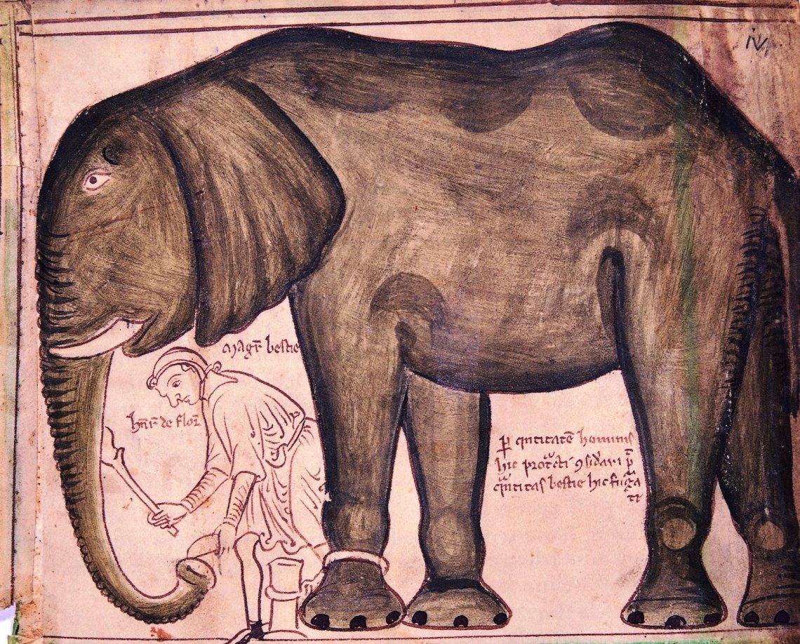 Henry III's elephant