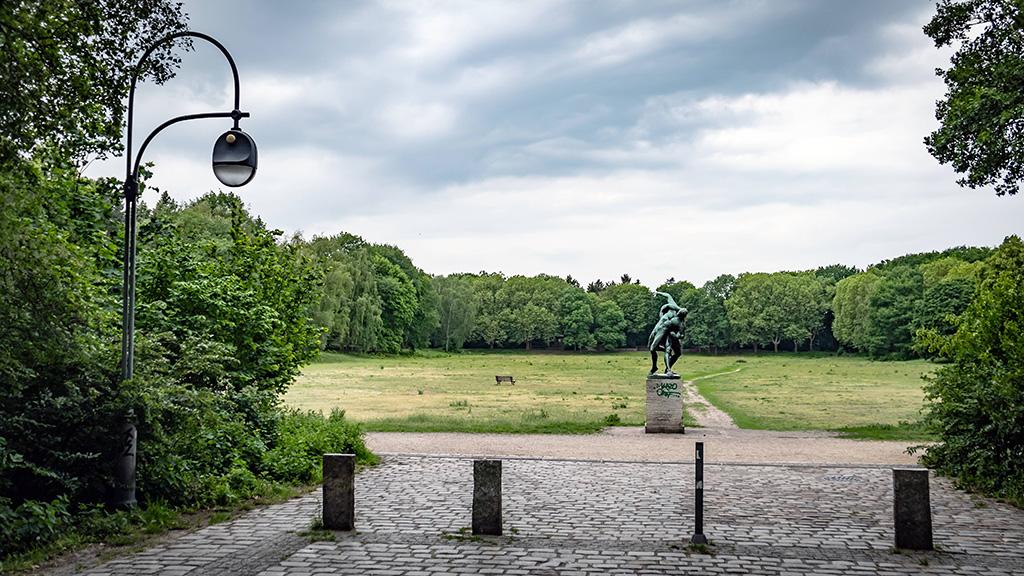Wedding: Catcherwiese im Volkspark Rehberge wird nicht zum Sportplatz