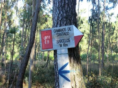 Camino-Portugues-Portugal-2012-072